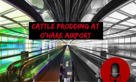 SucksRadio: :Cattle Prodding at O'hare Airport|Frisking, Searching and Mugging in Chicago