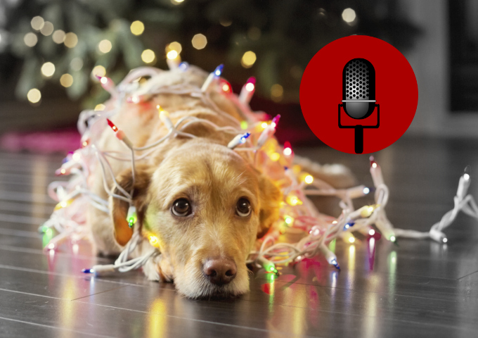 SucksRadio: :TGIF and Xmas Hype