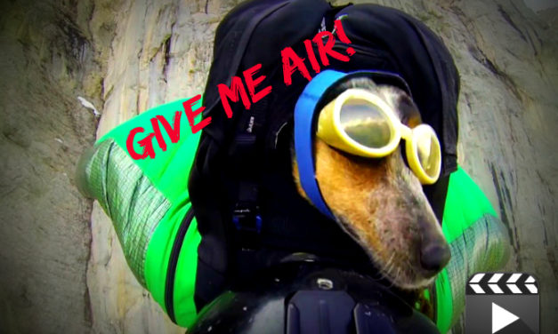 Give me air!